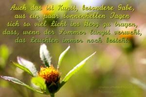 21.09.2015 - Sommerende/ www.immenreich.com