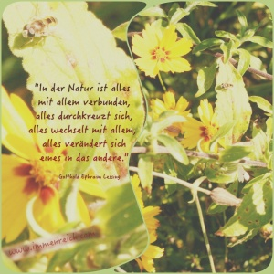07.10.2015spruch lessing