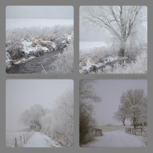 winterspaziergang 21.01.2016